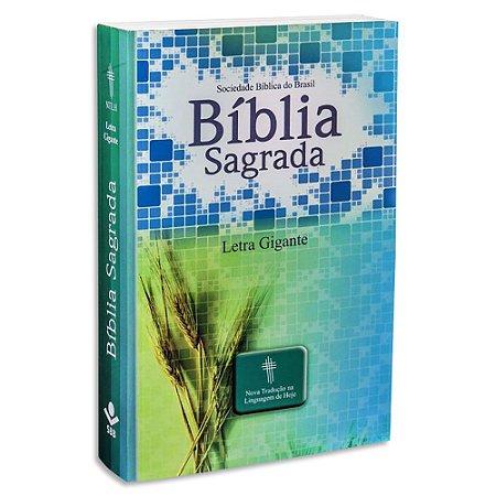 Bíblia NTLH Letra Gigante capa Ilustrada