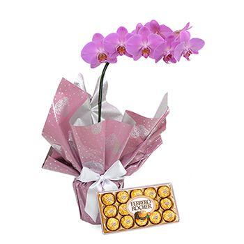 Orquídea  com Chocolate