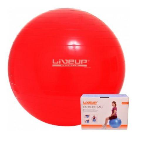 Bola de Pilates 45CM