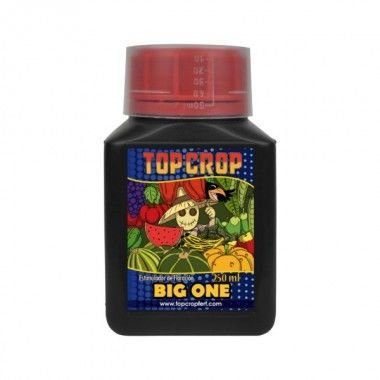 TOP CROP - Big One 250ml
