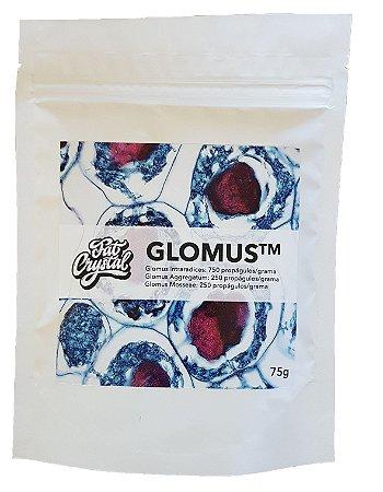 Fertilizante Fat Crystal Glomus 75g