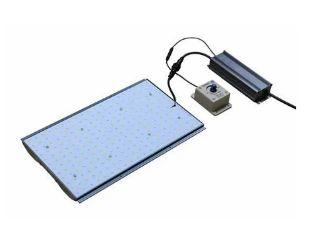 Painel Led BIOLEDZ Quantum Board 80w BIVOLT