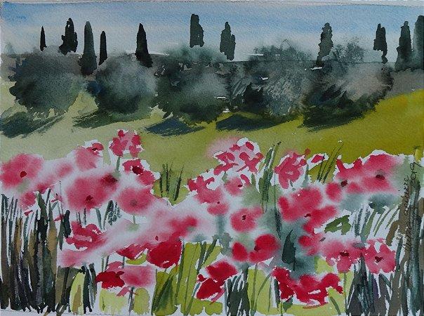 Pintura Original Em Aquarela - Papoulas Na Toscana 28x20 cm - Tela/Quadro Para Decoração Da Sua Casa