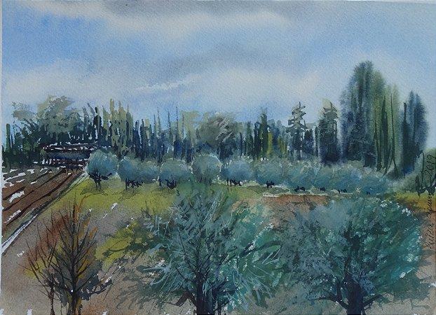 Pintura Original Em Aquarela Oliveiras Em Mendoza 28x20cm - Tela/Quadro Para Decoração Da Sua Casa