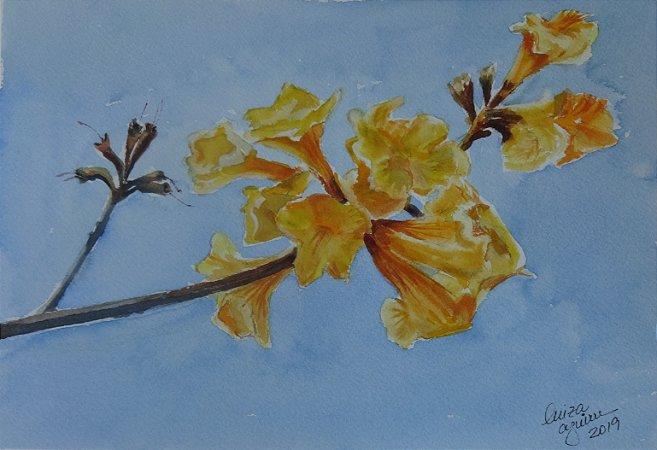 Pintura Original Em Aquarela - Flor do Ipê Amarelo 27x19 cm - Tela/Quadro Para Decoração Da Sua Casa