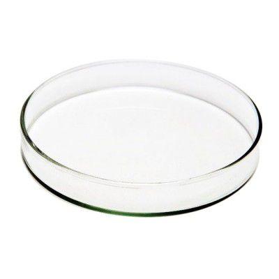 Prato para alimentação Camarões - Vidro 100mmx15mm - 1 Unidade