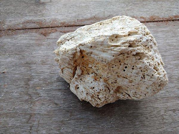 Pedra Coral Morto 0,379 kg