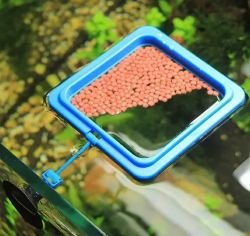 Alimentador Flutuante com Ventosa para aquários