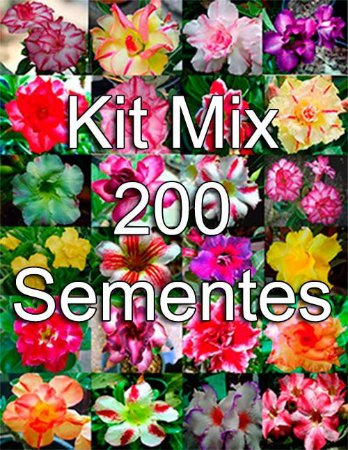 KIT MIX 200 sementes de Rosa do Deserto