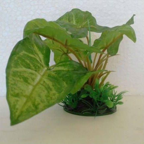 Planta Minjiang Enfeite Para Aquários 4015