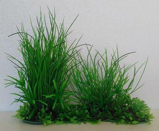 Planta Minjiang Enfeite Para Aquários 3120