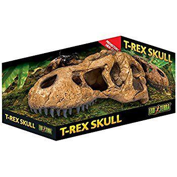 Toca Decoração Crânio De Dinossauro T-Rex Exo Terra