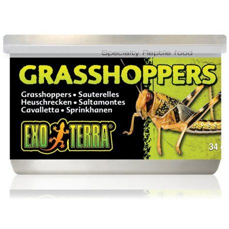 Gafanhotos Enlatados Grasshoppers Exo Terra 35g