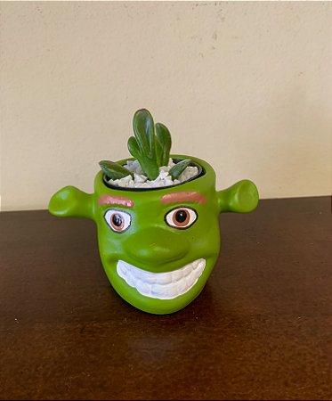 Suculenta Shrek