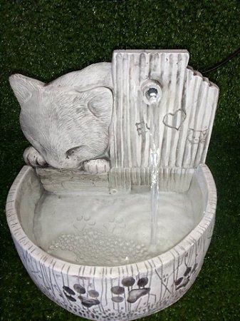 Fonte de Água Gato