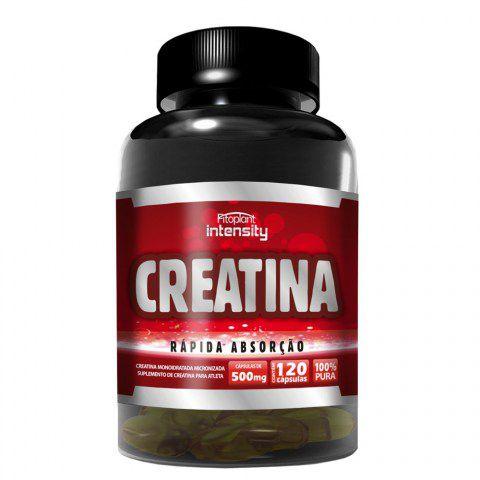 CREATINA - 500MG (120 CÁPSULAS) - FITOPLANT