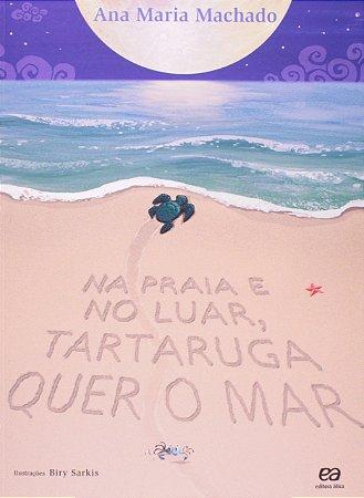 Na praia e no luar, tartaruga quer o mar