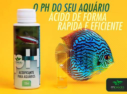 ACIDIFICANTE PARA AQUÁRIOS PH-   MBREDA