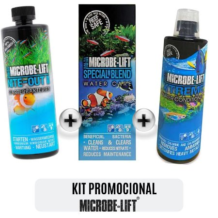 KIT ESPECIAL NITE OUT II + SPECIAL BLEND + XTREME CONDICIONADOR