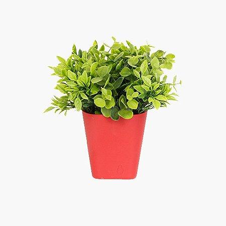 Vaso com Plantas Parede Vermelho
