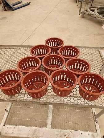 Kit 10 Vasos Importados Sofisticados Vazados Marrom