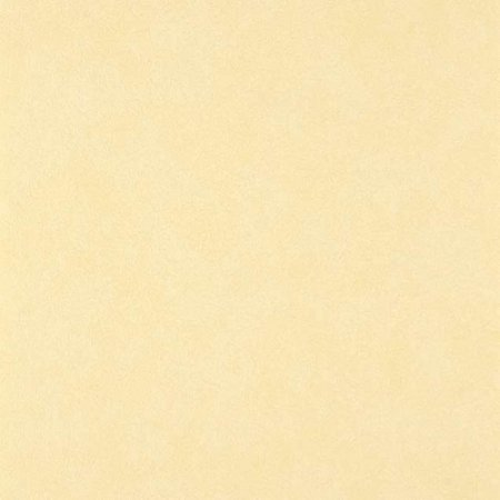 Papel De Parede Vinilico Colours WW0116-26