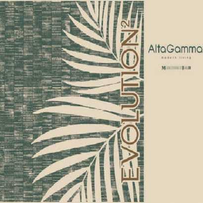 Book Alta Gamma Evolution 2