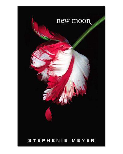 Ímã Decorativo Capa de Livro Lua Nova - ICL19