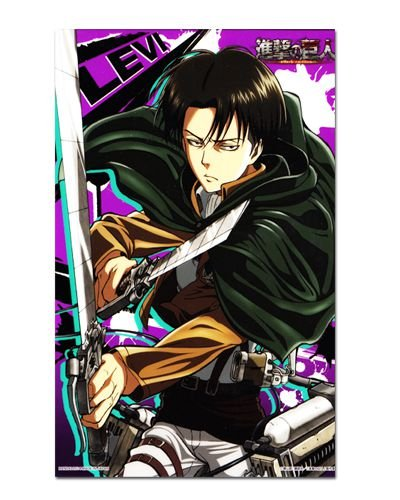 Ímã Decorativo Levi Attack on Titan - Shingeki no Kyojin - IANSK017