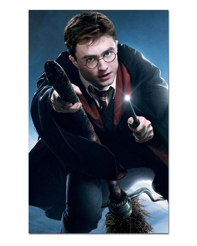 Ímã Decorativo Harry Potter - IHP09