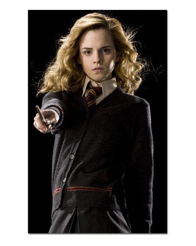 Ímã Decorativo Hermione - Harry Potter - IHP24
