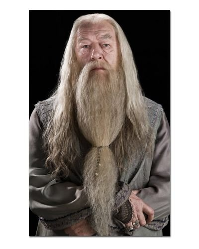 Ímã Decorativo Dumbledore - Harry Potter - IHP25