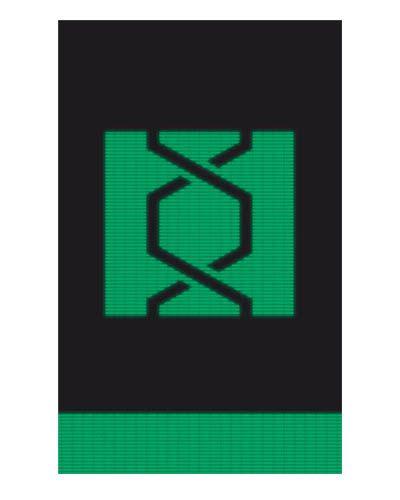Ímã Decorativo Observadora - Arrow - IQD03