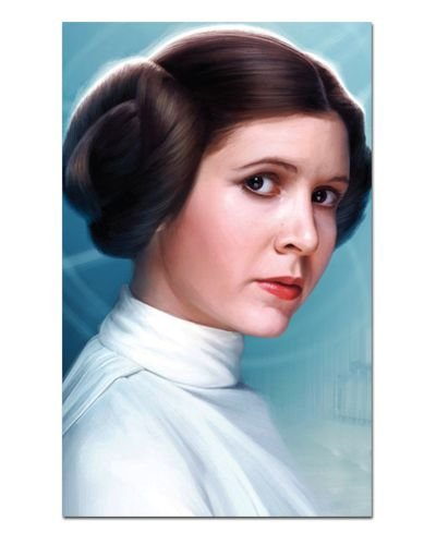 Ímã Decorativo Leia Organa - Star Wars - ISW15