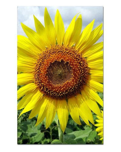 Ímã Decorativo Girassol - Garden - IFL01