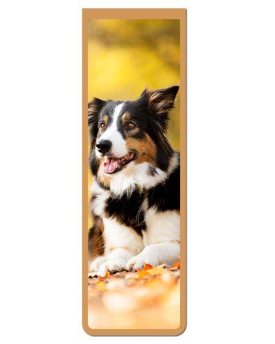 Marcador De Página Magnético Border Collie - Pet Dog - MDOG08