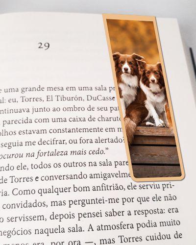 Marcador De Página Magnético Border Collie - Pet Dog - MDOG12