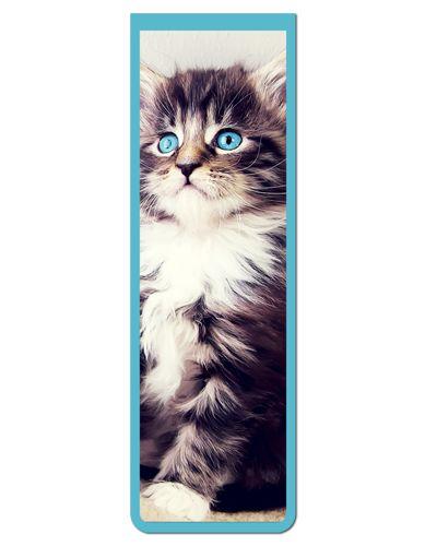 Marcador De Página Magnético Gato Maine Coon - Pet Cat - MCAT17