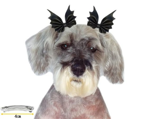 Halloween Laço Morcego