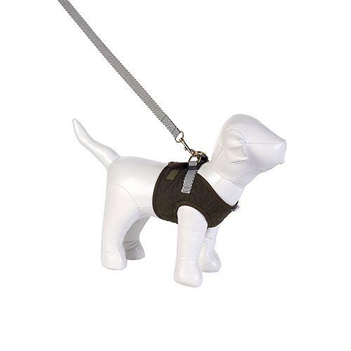 Guia e Peitoral Colete para Cachorro Brim Matelassê Verde Musgo Woof Classic