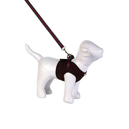 Guia e Peitoral Colete para Cachorro Brim Matelassê Marrom Woof Classic