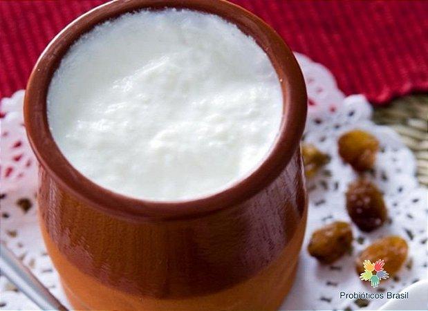 IOGURTE AMASI (Leite Fermentado Africano, Iogurte Africano, Maas)