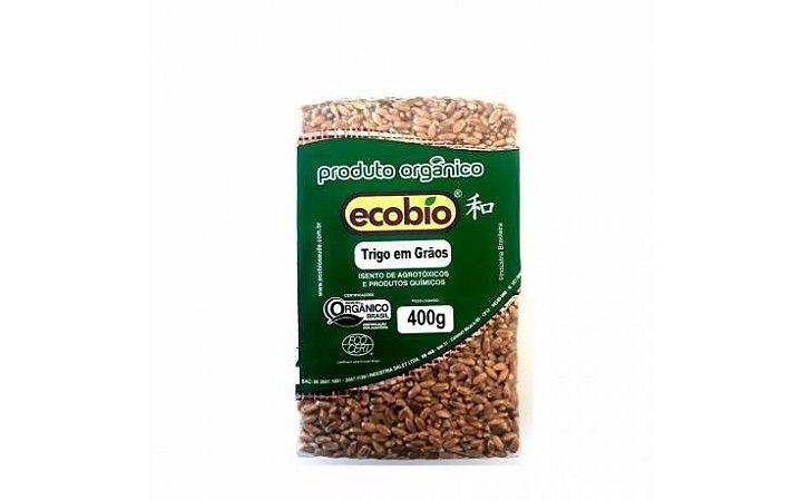 Trigo em Grãos Orgânico - 500g - Ecobio