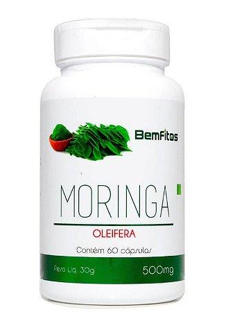 Moringa Oleifera - 60 Capsulas (500mg) - BemFitos