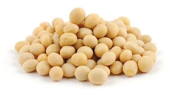 Soja em grãos não transgênica 500g