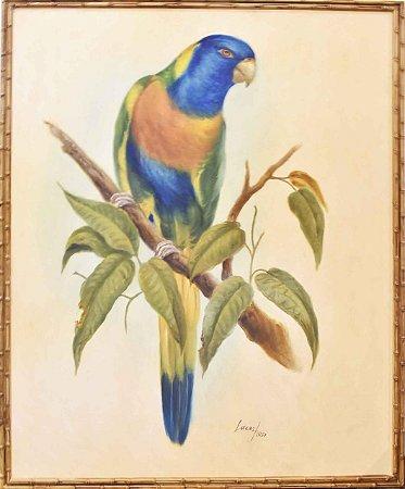 Quadro lona pintada a óleo pássaro 1