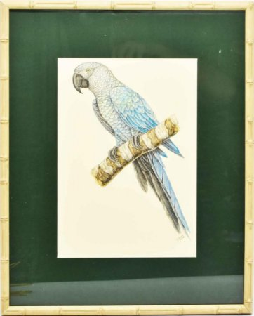 Quadro de Pássaro 4 com Passpatour verde e faux bamboo