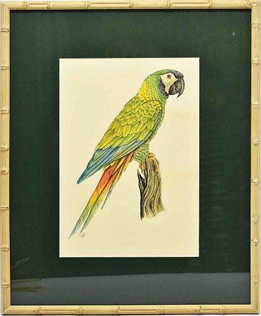Quadro de Pássaro 13 com Passpatour verde e faux bamboo