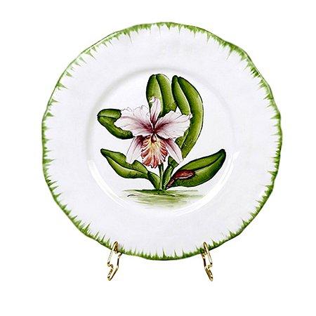 Prato de Orquídea 1