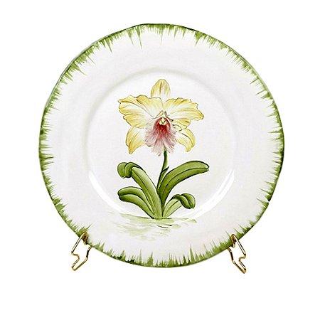 Prato de Orquídea 9